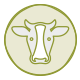 Care for a cow Campaign icon